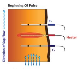 Diagram 1 Showing Beginning of SFM1 Heat Pulse